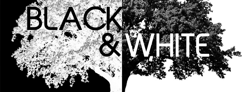 Black & White 2017 opens October 19, 2017 at the Hallberg Center for the Arts in Wyoming, MN